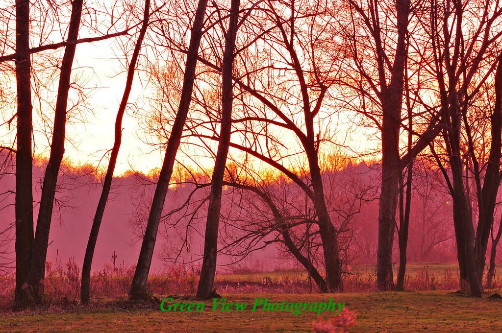 Morning Glow - Irondequoit
