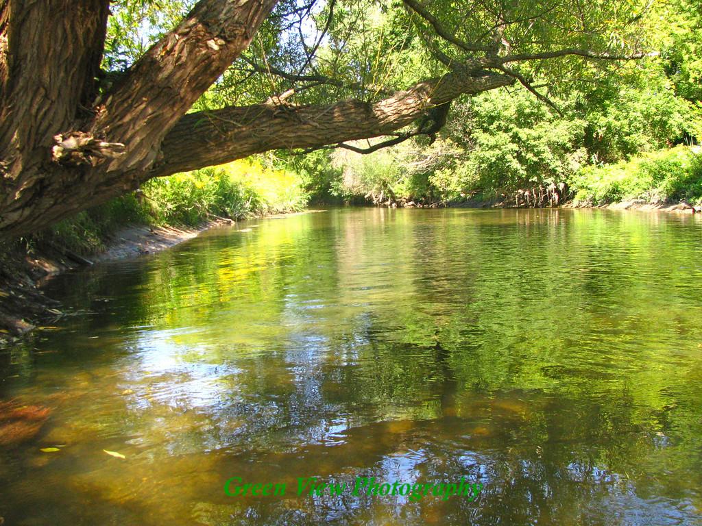 Irondequoit Creek Reflections