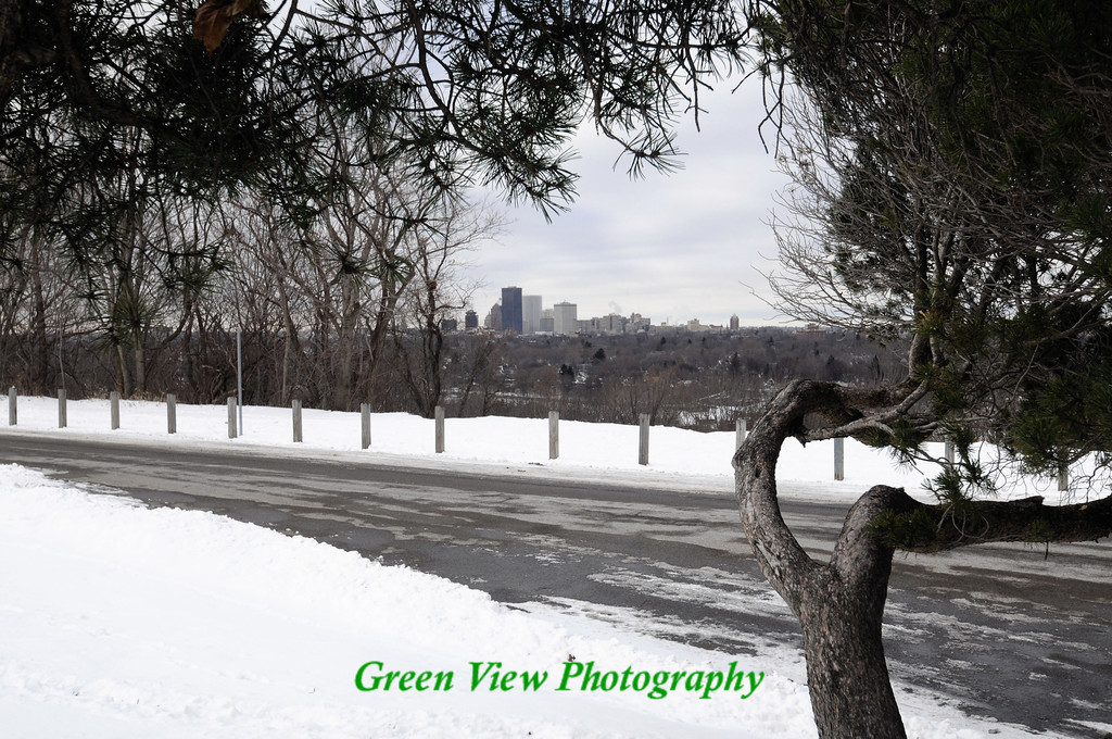 City view from Cobbs Hill