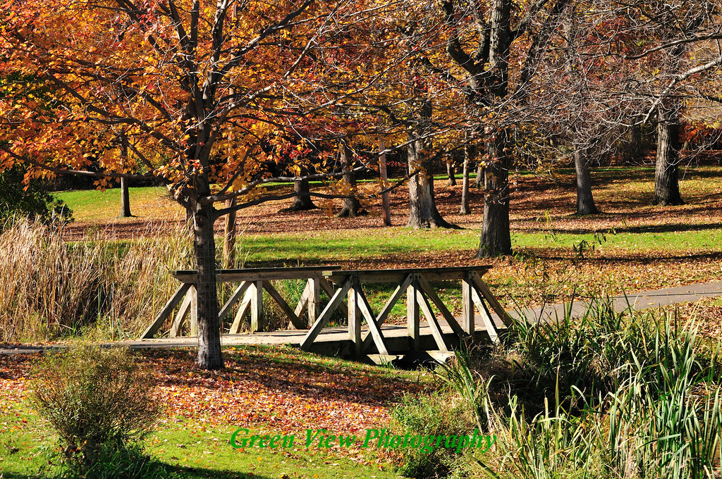 Seneca Park Foot Bridge