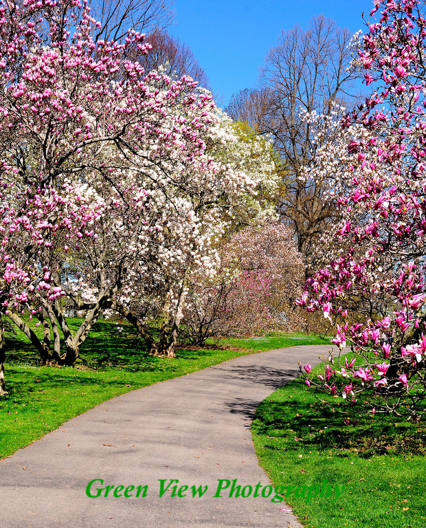 Highland Park Path