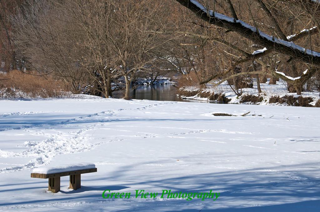 Bench along the Creek - Ellison Park