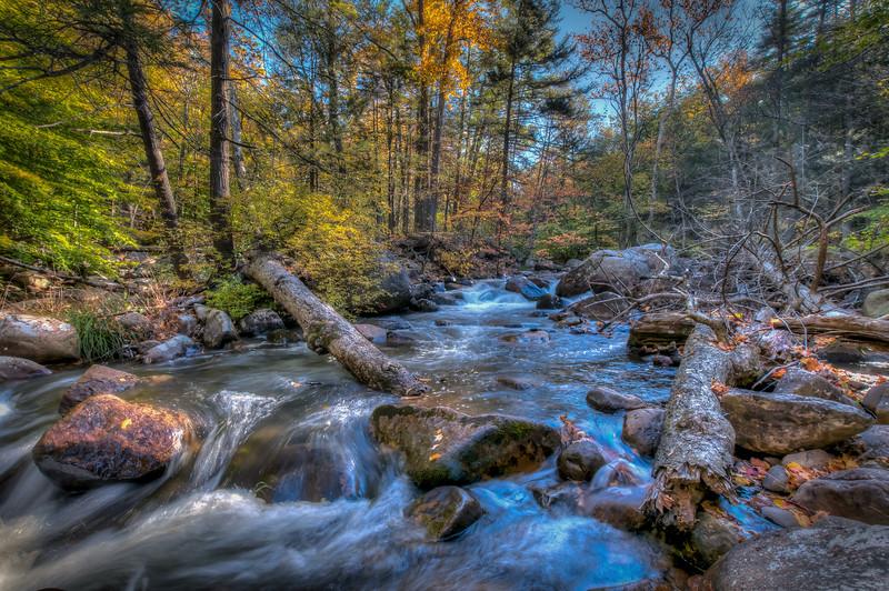 Stony Brook Stream # 1