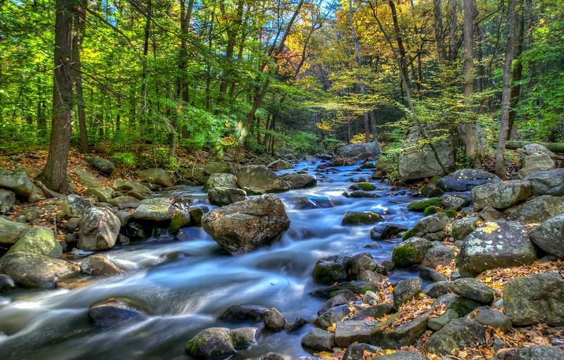 Stony Brook Stream # 2