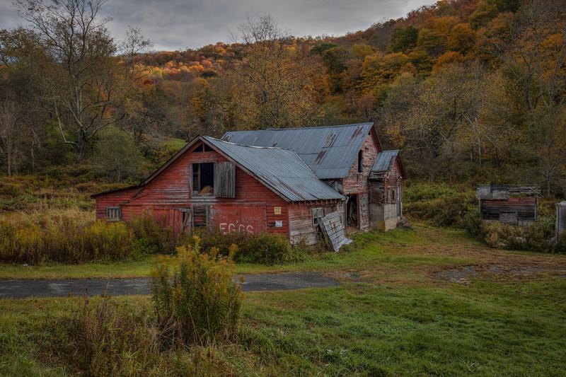 Eggs Barn, Roscoe New York