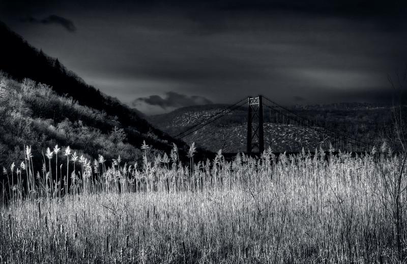 A Bridge In The  Night