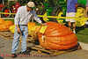 A volunteer labels one of the giant pumpkins in the Largest Pumpkin Weigh-Off contest at the Great Cortland Pumpkinfest in Cortland, New York.