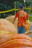 A young boy sizes up the pumpkins competing in the Largest Pumpkin Weigh-Off contest at the Great Cortland Pumpkinfest in Cortland, New York.