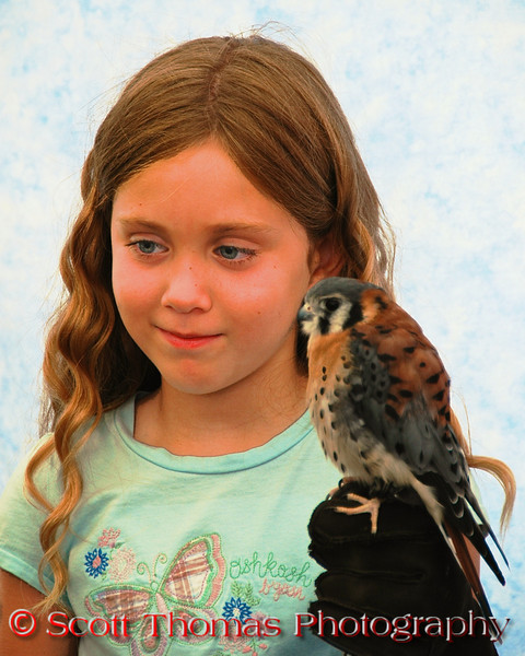 A girl holding an American Kestrel for a souvenir photo in the Raptor Project's exhibit at the New York State Fair in Syracuse.  [For Non-Commercial Editorial Use Only]