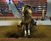 CNY Reigning Horse Association Ride and Slide show held in the Coliseum on the NYS Fairgrounds in Syracuse, New York.
