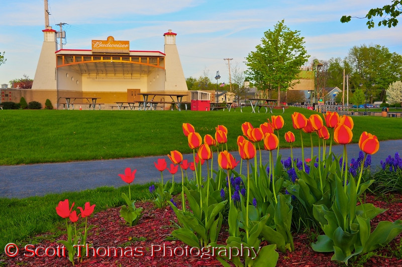 Budweiser amphitheater and Spring flowers on Paper Mill Island in Baldwinsville, New York.