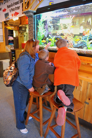 A woman points out the fish to two brothers in Doug's Fish Fry in Skaneateles, New York.