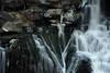 Akron Falls 121811 57 DSC_6728