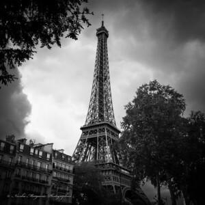 Regard sur La Tour Eiffel
