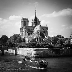 Regarder Notre Dame