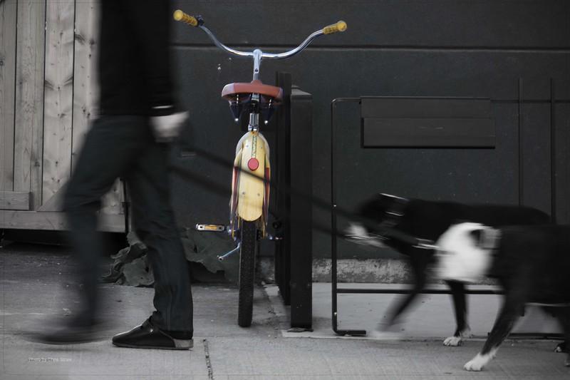 bulldogsandbike