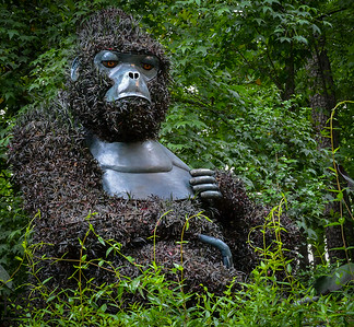 05-09-14 A sad looking gorilla sculpture.
