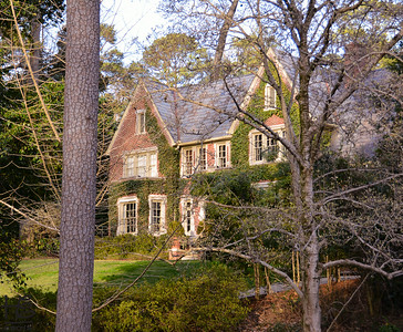 02-23-14 The late afternoon sunlight cast over the ivy-covered brick home caught my attention while walking in Buckhead.  In mere weeks, this view will be blocked by vibrant foliage.