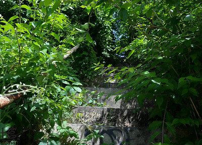 05-01-14 A long forgotten stairway in Midtown discovered on a walk.