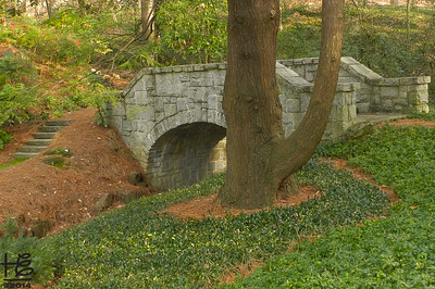 12-26-14 A lovely bridge across the stream  that meanders alongside Andrews Drive in Buckhead.