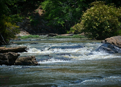 06-14-14 The Sweetwater Creek rapids were gorgeous and the perfect venue to begin exploration in shutter speed.  Stats: 1/2000 sec @ f/8.0 ISO 400