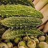 Malaysian produce
