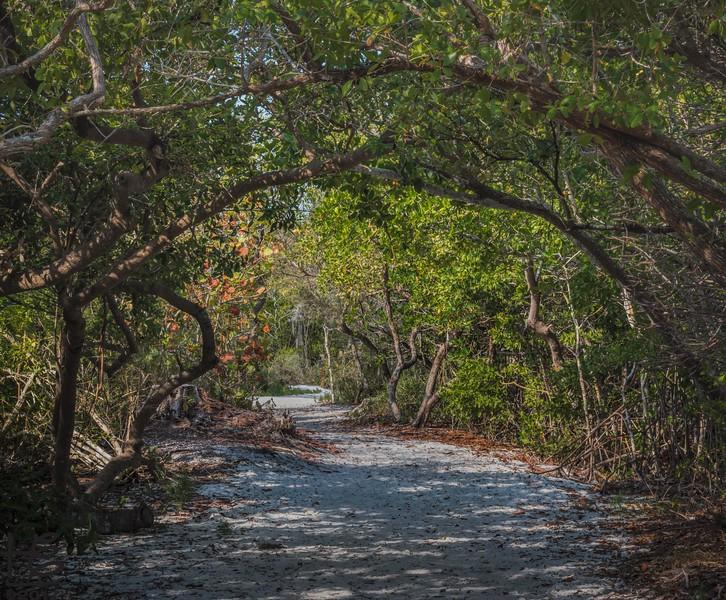 Longboat Key Park trail