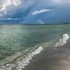 Northern rainbowrr