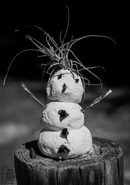 beach snow man