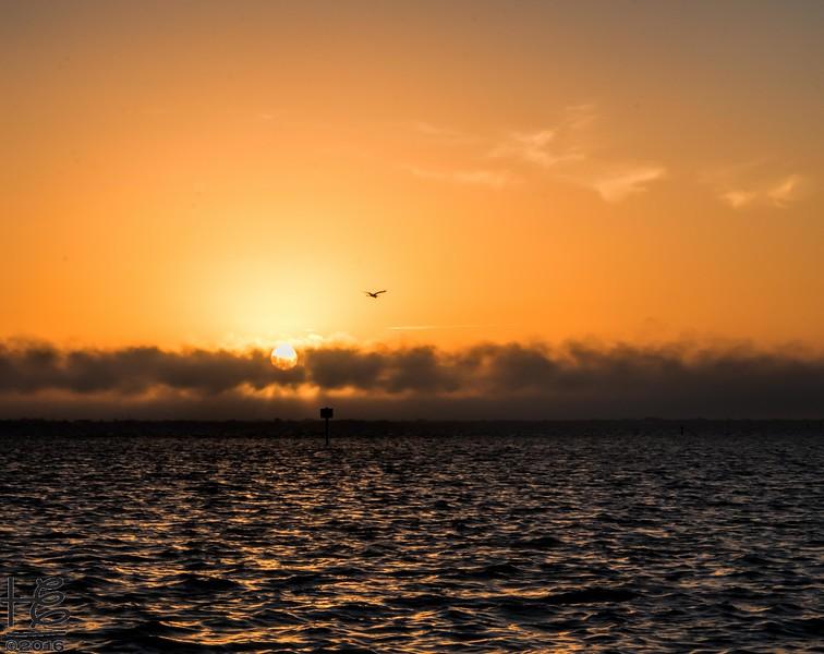 Sunrise over Sarasota Bay