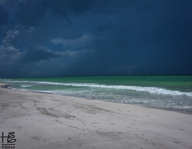 Storm over the Gulf
