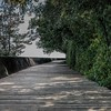Toronto Islands Boardwalk