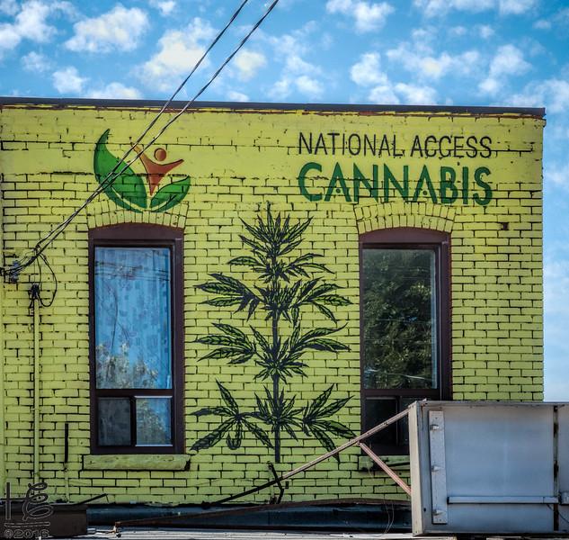 Cannabis access
