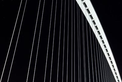 Ponte di Calatrava, dettaglio.