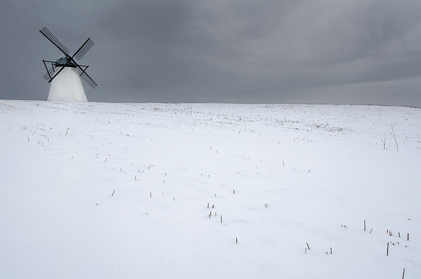 Vihula Manor Windmill