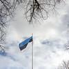 Estonia 99 - Independence Day Celebration