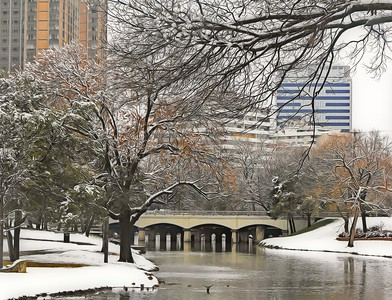 Snow at Turtle Creek