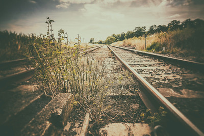 Abandoned Railway Track.. By David Stoddart