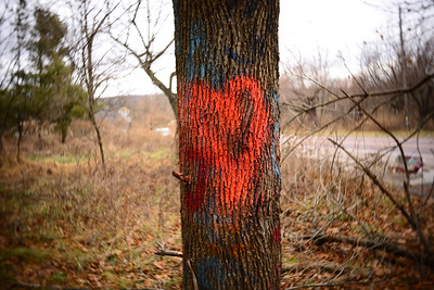 Centralia, PA---lots of hearts to see