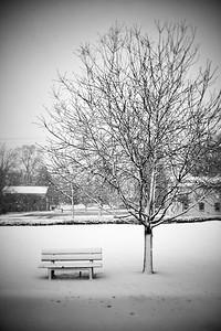 Solitude---Trappe, PA