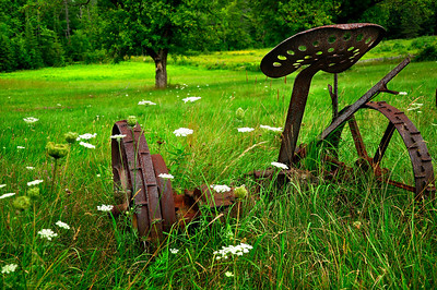 Rusty Farming Machine in Galway Lake, Saratoga County