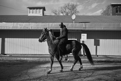 Baltimore -- Gready rides through Hollins Market atop of Pimp, who hasn't been ridden in a while on Feb. 24, 2019. Photo by Eric Lee