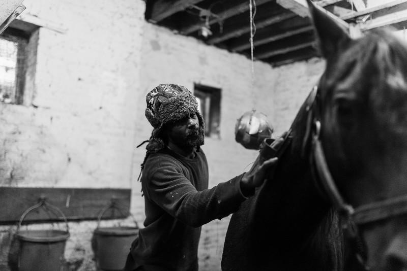 "Baltimore -- Leonard ""Phelix"" Wills Jr., 44, grooms a horse on Nov. 9, 2018."