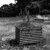 Metal Planterbox, North St. Charles