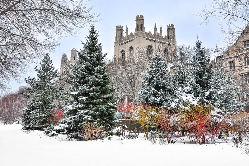University of Chicago, Winter