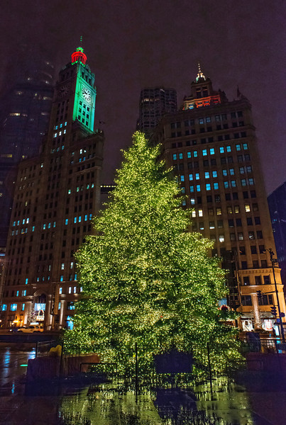 Pioneer Court Christmas Tree