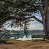 Lake Merced Overlook