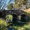 The Rustic Bridge, Golden Gate Park