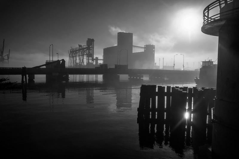 Morning Fog (II), Islais Creek Channel