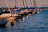 CHI 004                       <br /> Sailboats rest peacefully at their moorings as the sun sets on Burnham Harbor, Chicago lakefront.